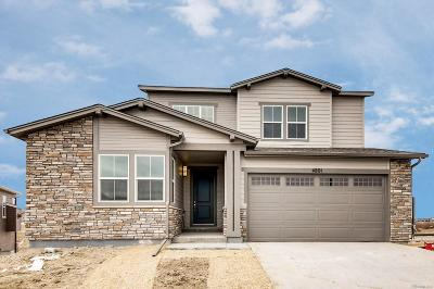 Castle Rock Single Family Home Active: 4801 Basalt Ridge Circle