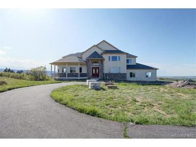 Castle Rock CO Single Family Home Active: $1,300,000