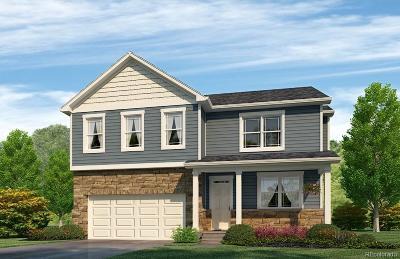 Aurora Single Family Home Active: 4855 South Tempe Street