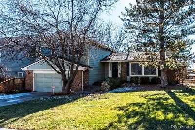 Highlands Ranch Single Family Home Active: 30 Jack Rabbit Place