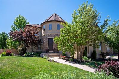 Highlands Ranch Firelight Single Family Home Under Contract: 10655 Redvale Road