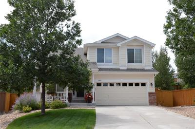 Parker Single Family Home Active: 16819 Trail View Circle
