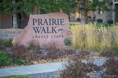 Parker Condo/Townhouse Active: 9185 Wilde Lane #203 B