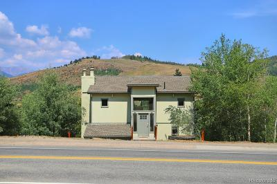 Summit County Single Family Home Active: 297 Deer Path Road