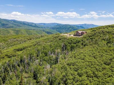 Steamboat Springs CO Single Family Home Active: $1,194,000