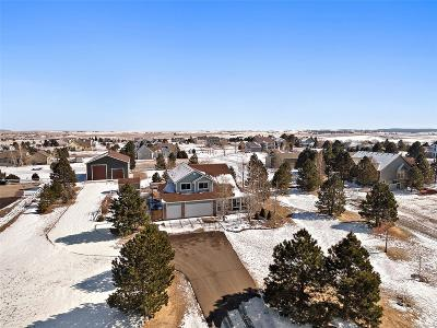 Elbert County Single Family Home Under Contract: 41446 Apple Field Circle