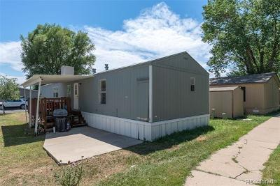 Westminster Single Family Home Active: 860 West 132nd Avenue #284