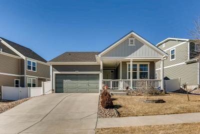 Denver Single Family Home Under Contract: 20243 East 55th Place