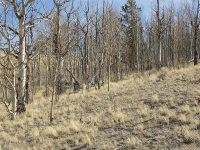 Como CO Residential Lots & Land Active: $14,900