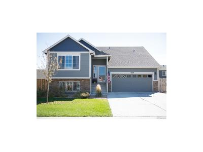 Larimer County Single Family Home Under Contract: 4189 Woodlake Lane