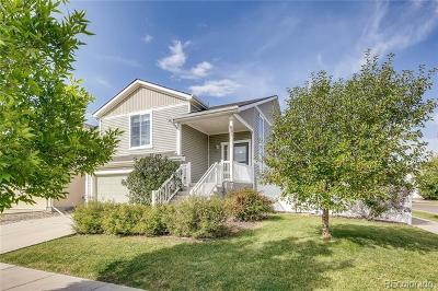 Denver Single Family Home Active: 5559 Killarney Street