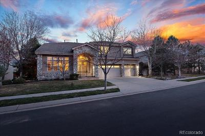 Broomfield Single Family Home Active: 4606 Castle Circle