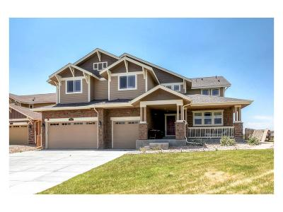 Castle Rock Single Family Home Active: 1551 Bent Wedge Point