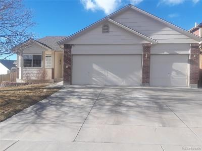 Parker Single Family Home Under Contract: 22919 Blackwolf Way