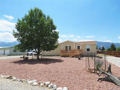 Buena Vista Single Family Home Active: 158 Susan Drive