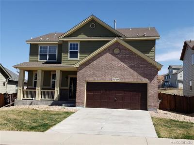 Douglas County Single Family Home Active: 3520 Desert Ridge Circle