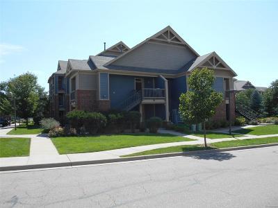 Longmont Condo/Townhouse Active: 804 Summer Hawk Drive #108