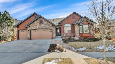 Flying Horse Single Family Home Under Contract: 1141 Spectrum Loop