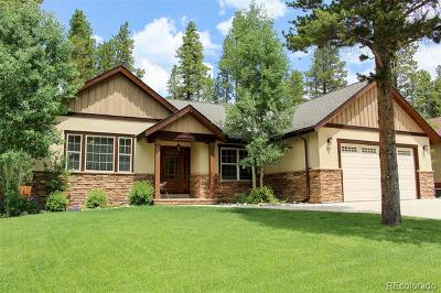 Leadville Single Family Home Under Contract: 917 Copper Street