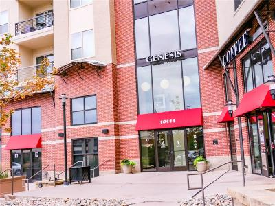 Englewood Condo/Townhouse Active: 10111 Inverness Main Street #226