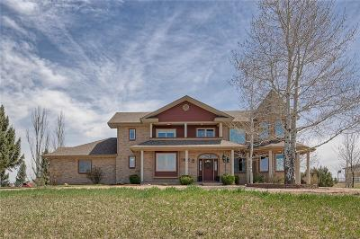Longmont Single Family Home Active: 15094 North 95th Street