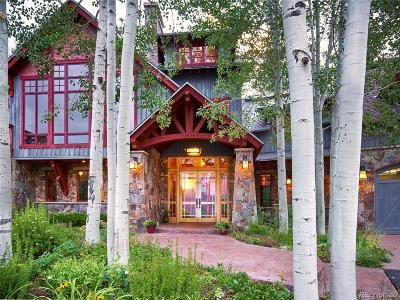 Steamboat Springs  Single Family Home Active: 33855 Canyon Court