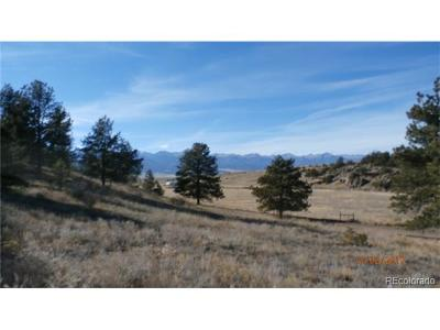 Residential Lots & Land Active: 195 Saddle Horn Road