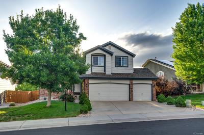 Parker Single Family Home Under Contract: 20323 Vista Circle