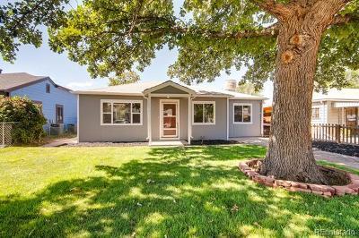 Denver Single Family Home Active: 2049 Havana Street