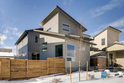 Littleton Single Family Home Active: 9755 Taylor River Circle