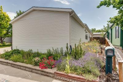 Federal Heights Single Family Home Under Contract: 9073 Madeleine Street