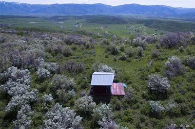 Steamboat Springs CO Residential Lots & Land Active: $325,000