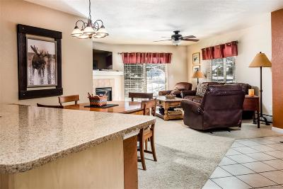 Steamboat Springs CO Condo/Townhouse Active: $430,000