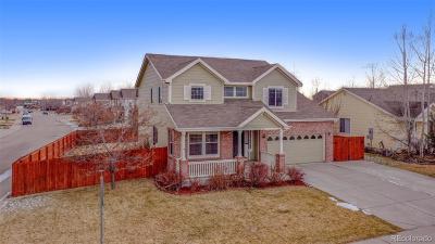 Single Family Home Active: 1476 Tiger Avenue