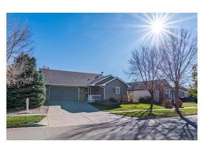 Berthoud Single Family Home Active: 210 Bein Street