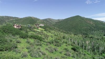 Residential Lots & Land Active: 31615 Aspen Ridge Road