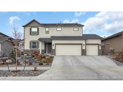 Briargate Single Family Home Active: 9202 Kathi Creek Drive