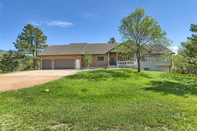 Palmer Lake Single Family Home Active: 761 Forest View Road