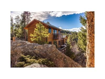 Evergreen, Arvada, Golden Single Family Home Active: 123 Black Bear Trail