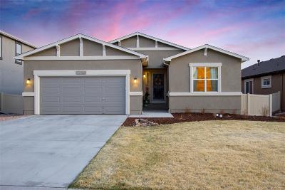 Colorado Springs Single Family Home Active: 8915 Vanderwood Road