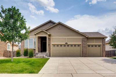 Aurora Single Family Home Active: 25910 East 3rd Avenue