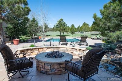 Larkspur CO Single Family Home Active: $2,459,000