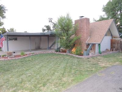 Denver Single Family Home Active: 1810 South Holly Street
