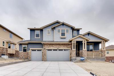 Arapahoe County Single Family Home Active: 6672 South Robertsdale Way