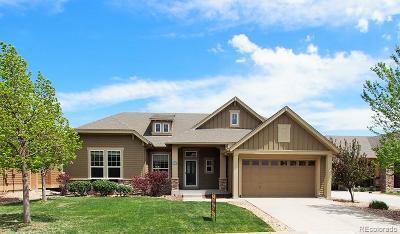 Castle Rock Single Family Home Active: 1388 Suncrest Road