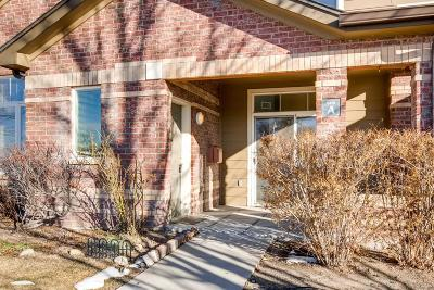Highlands Ranch Condo/Townhouse Under Contract: 6418 Silver Mesa Drive #A