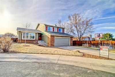 Highlands Ranch Single Family Home Under Contract: 8953 Winrock Street