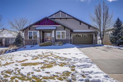 Littleton Single Family Home Active: 11308 West Ontario Avenue