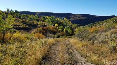 Oak Creek CO Residential Lots & Land Active: $585,000
