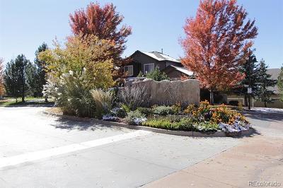 Douglas County Condo/Townhouse Active: 6470 Silver Mesa Drive #B